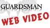 web-video-logo_v1correct size