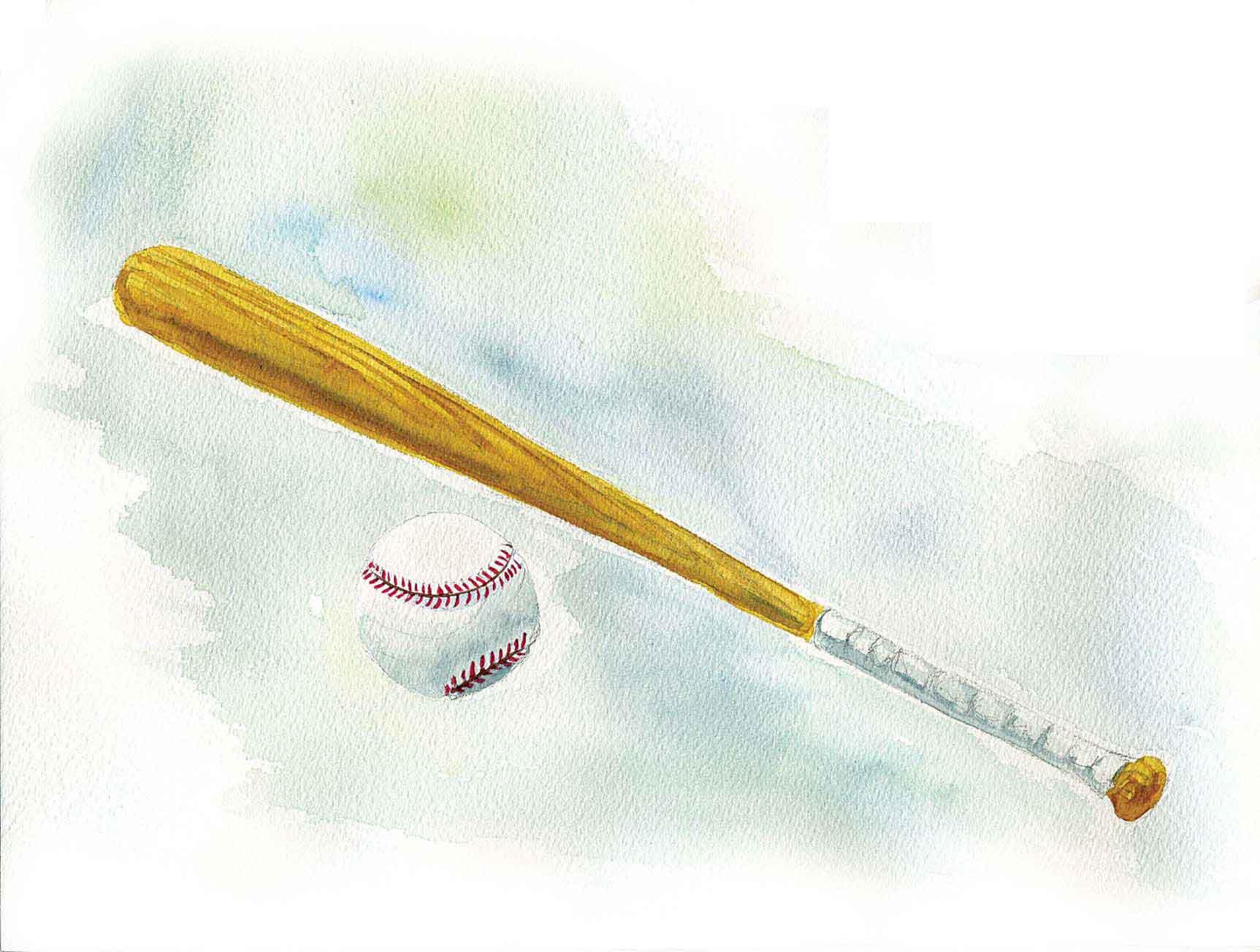 1_Online_baseball-bat