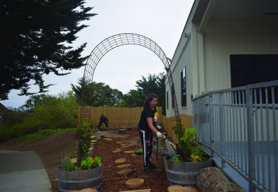 Reconnecting the Child Development Center to nature